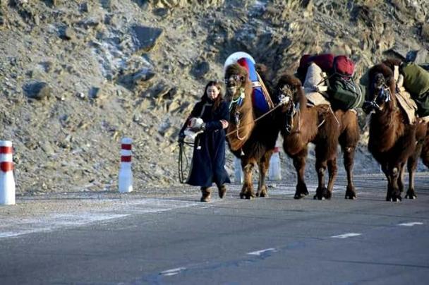 Тэмээтэй аялагч бүсгүй аяллаа ганцаараа үргэлжлүүлэхээр шийджээ