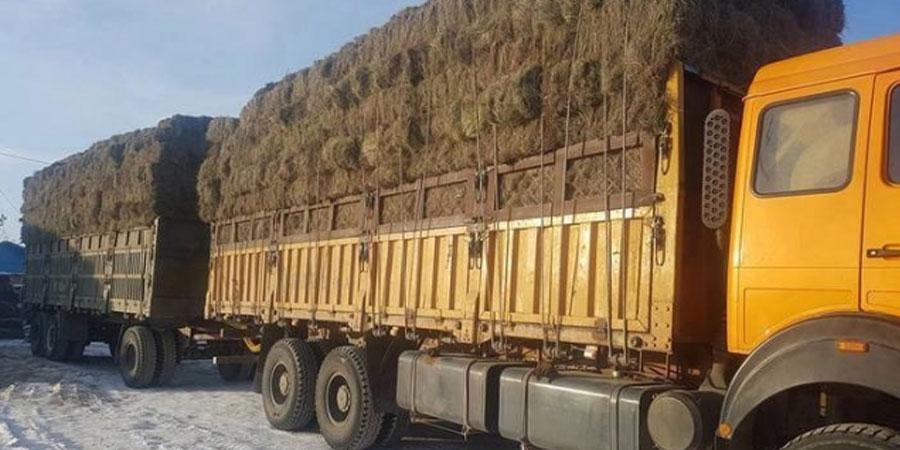 Дүүргийн 22 өрхөд 10 тонн буюу 500 боодол өвсийг үнэ төлбөргүй олголоо