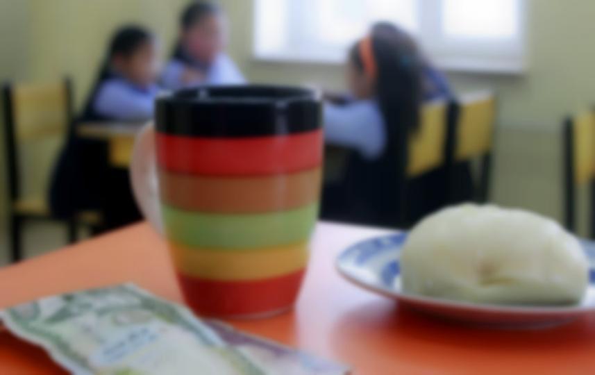 Сурагчдын үдийн хоолны тарагнаас энтеробактер илэрчээ
