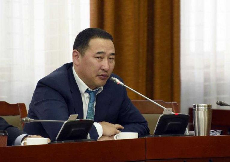 Ж.Мөнхбат: Нэг хүнд зориулсан хууль баталж, Монгол төрийн дархлааг сулруулах үйлдэл  жишиг болж болохгүй