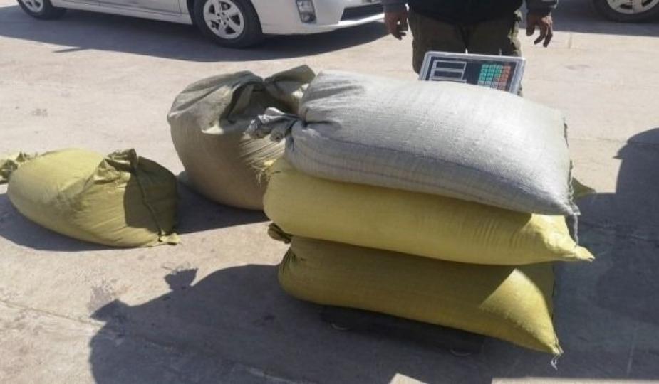 110 кг дэрвэгэр жиргэрүү нууж хил нэвтрүүлэхийг завджээ