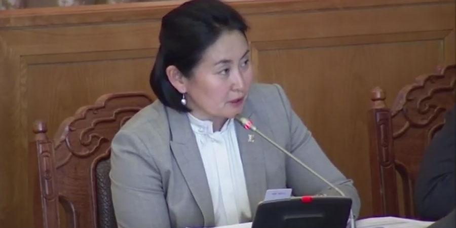 З.Нарантуяа: Засгийн газар мөрийн хөтөлбөрөө татаж авах хэрэгтэй