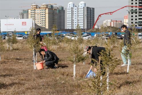 Маргааш бүх нийтийн мод тарих өдөр