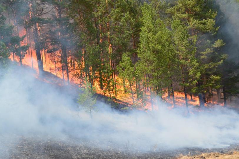 Хуурайшилтаас үүдэлтэй болзошгүй гал түймрээс сэргийлээрэй