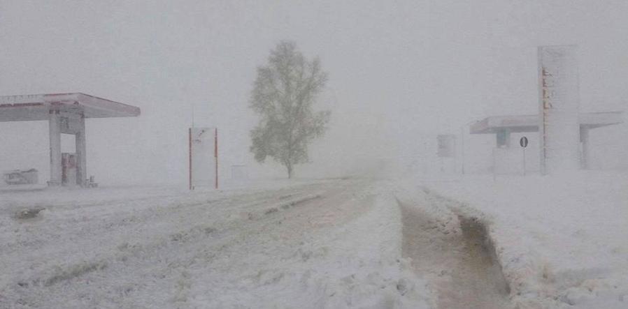Сэрэмжлүүлэг: Өнөөдөр ихэнх нутгаар цасан шуургатай