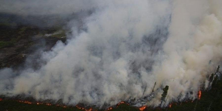 Улсын хэмжээнд есөн түймэр асч байна
