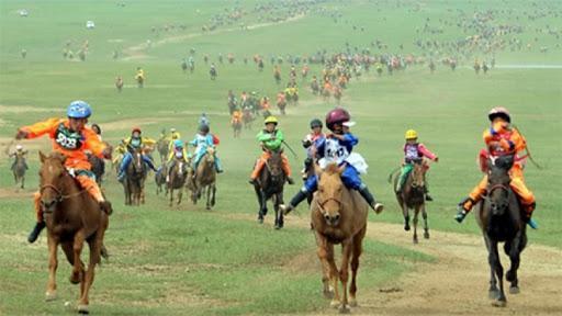 ШУУД: Үндэсний их баяр наадмын Эрлийз дээд насны морьдын уралдаан