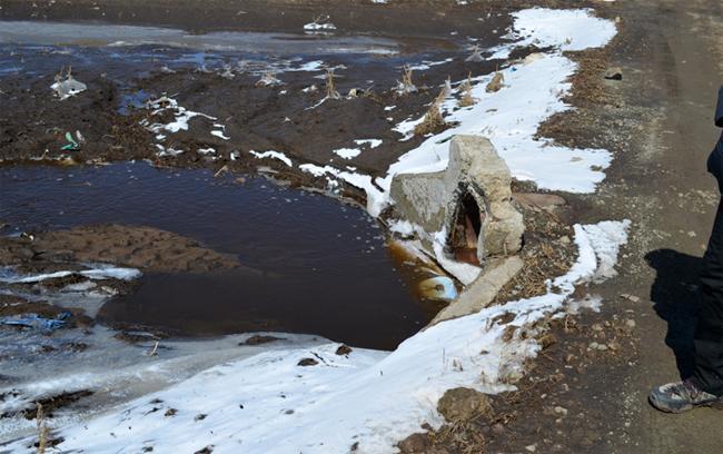 ''Бэлх сэлхийн замд шар усны үер буужээ''