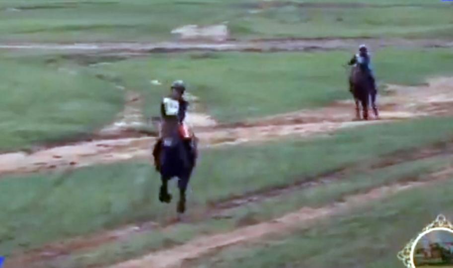 Завхан аймгаас гурав дахь их насны морь Улсын баяр наадамд түрүүллээ