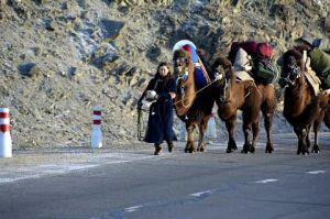 Тэмээчин Н.Байгалмаагийн бие муудсан ч, аяллаа цуцлахгүй